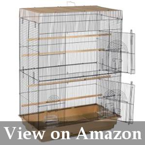 tall medium cage for cockatiel review