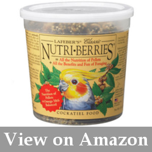 most nutritious and the best cockatiel seed mix