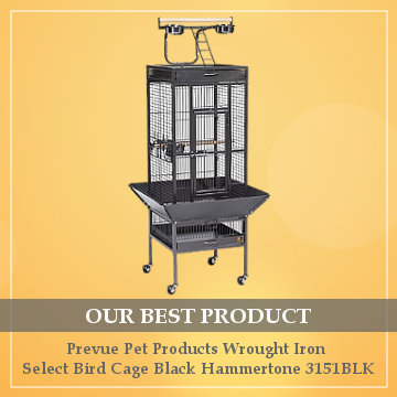 best cage for a budgie reviews