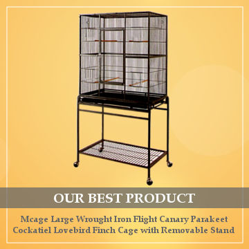best cage for cockatiel reviews